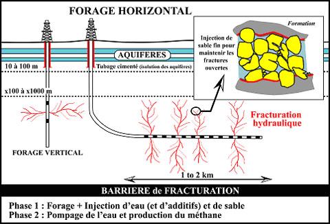 FORAGE-HORIZONTAL